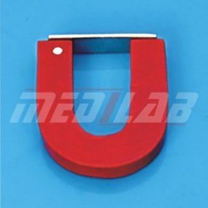 U-Shaped Magnets