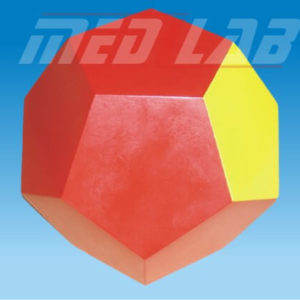 3D Model Of Dodecahedron
