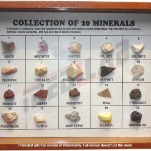 20 Minerals-Polished Showcase